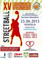 plakat2013 treetball.jpeg