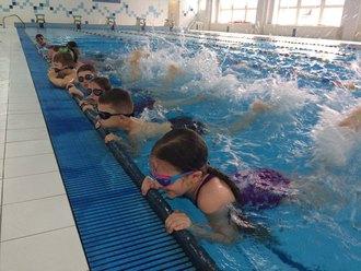 Galeria pływanie 2018 1