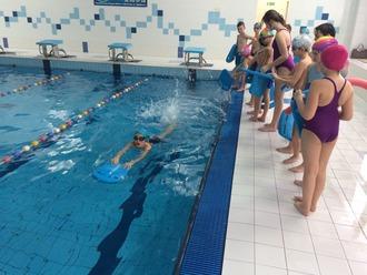 Galeria pływanie 2019