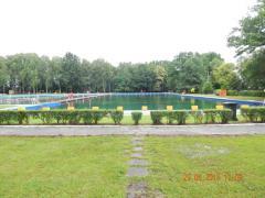 Galeria kadra pływaków